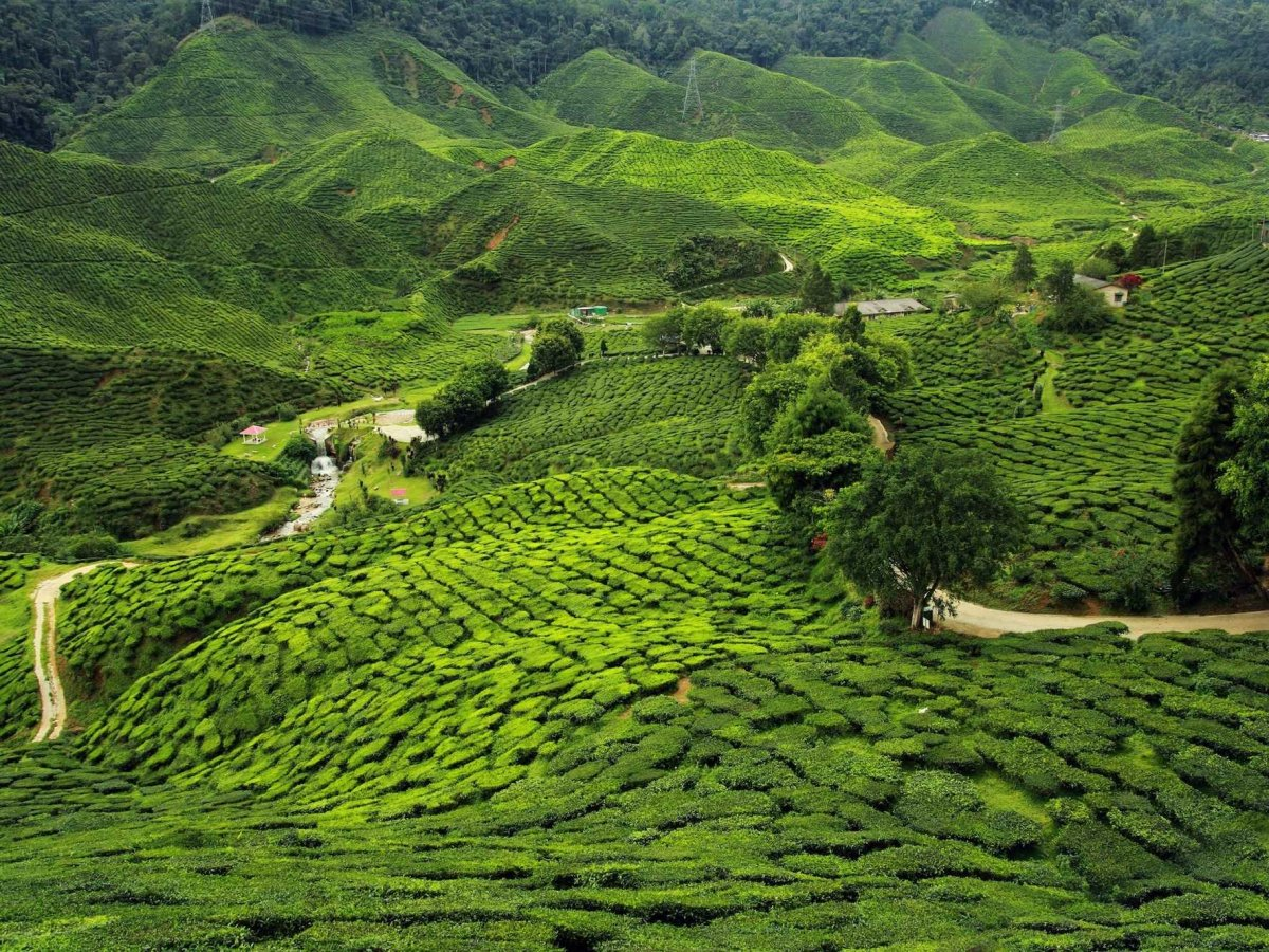 Ooty Hd Wallpapers 25 Pictures That Will Make You Want To Visit India