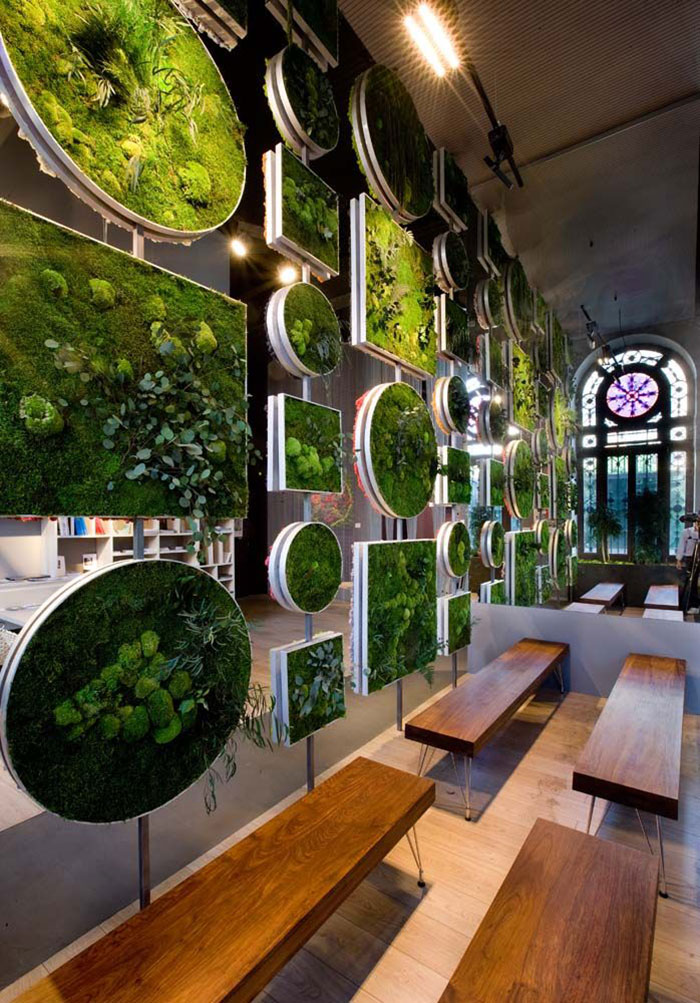 Indoor Garden Moss Walls: The Interior Design Trend That Turns Your Home
