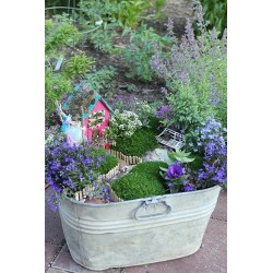 Small Crop Of Diy Fairy Garden