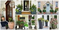 40+ Front Door Flower Pots For A Good First Impression