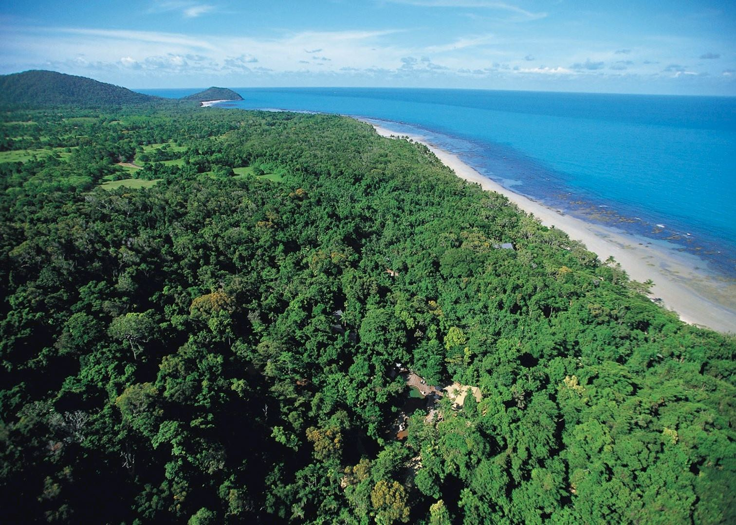 Trip Vietnam Blog Visit Daintree Forest Cape Tribulation Audley Travel