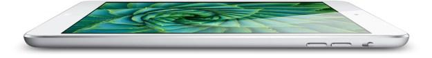 iPad Mini Sales Q1 2013
