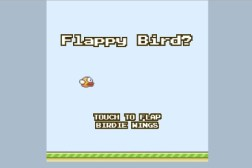 Flappy Bird Clone Pebble App Store