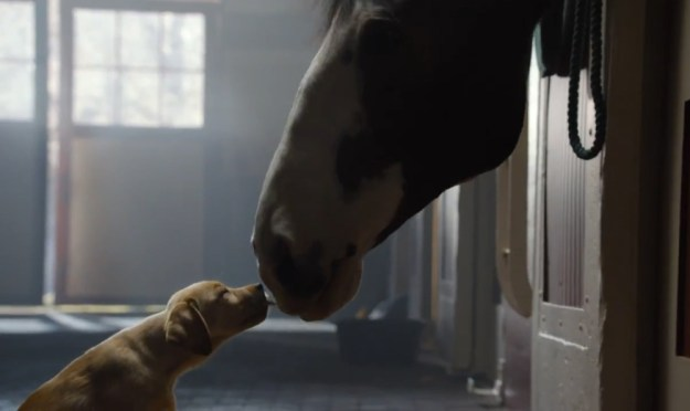 Top-5 Super Bowl Commercials