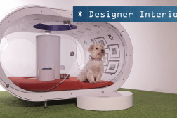 Samsung Dream Doghouse Video