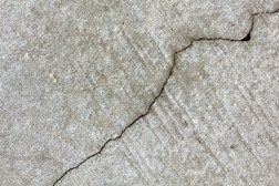 Self Healing Concrete Limestone Producing Bacteria