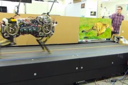 Robot Cheetah Video