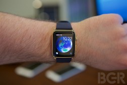 Apple Watch Customer Satisfaction Ratings