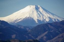 Mt. Fuji Wifi