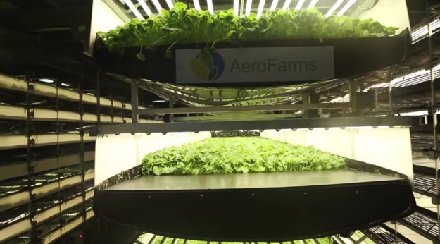 Aerofarm S Vertical Farming World Largest Project Is In
