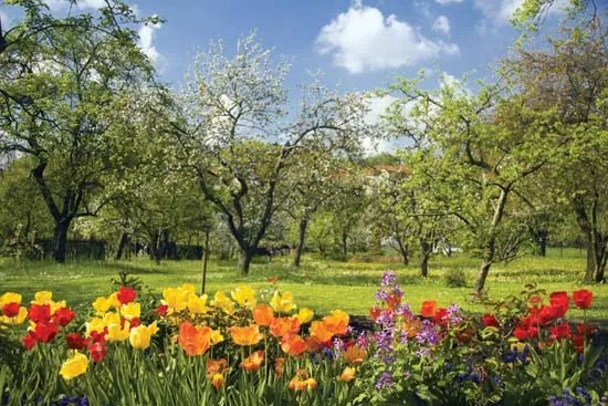 Spring season Britannica - photo of spring