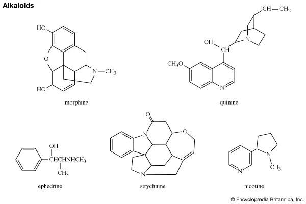 alkaloid Definition, Structure,  Classification Britannica