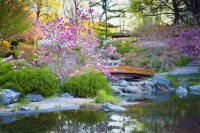 Japanese garden   Elements, Types, Examples, & Pictures ...