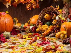 Pumpkins Fall Wallpaper Thanksgiving Day In The United States Britannica Com
