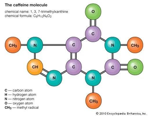 Molecule chemistry Britannica - molecule vs atom