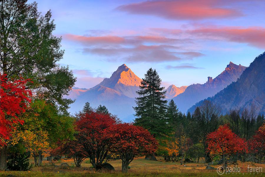 Fall In The Smokies Wallpaper Rhapsody In Red Valle Stretta Western Alps Piedmont