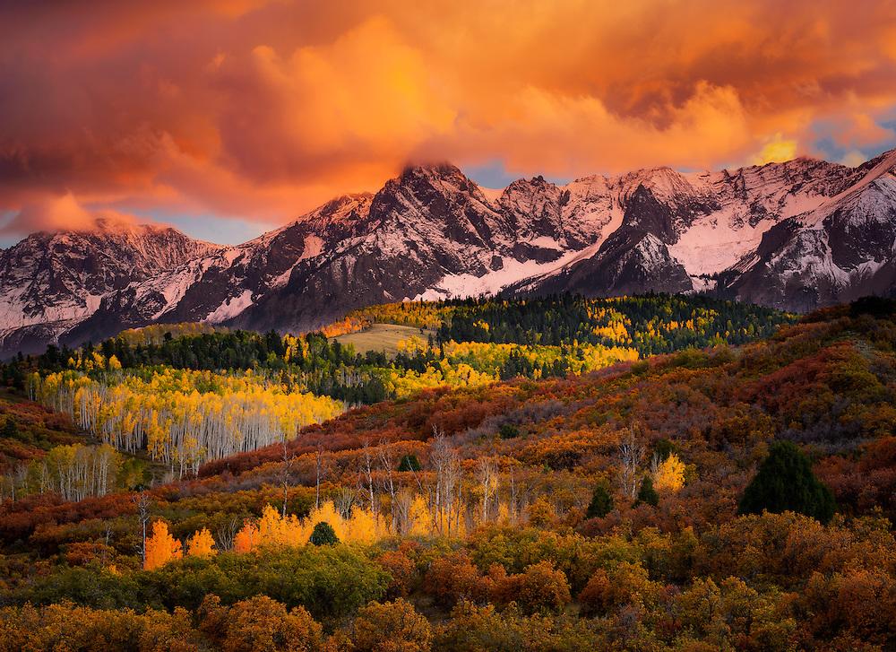 Fall Birch Tree Wallpaper Fall Color In The San Juan Mountains Of Colorado Adam