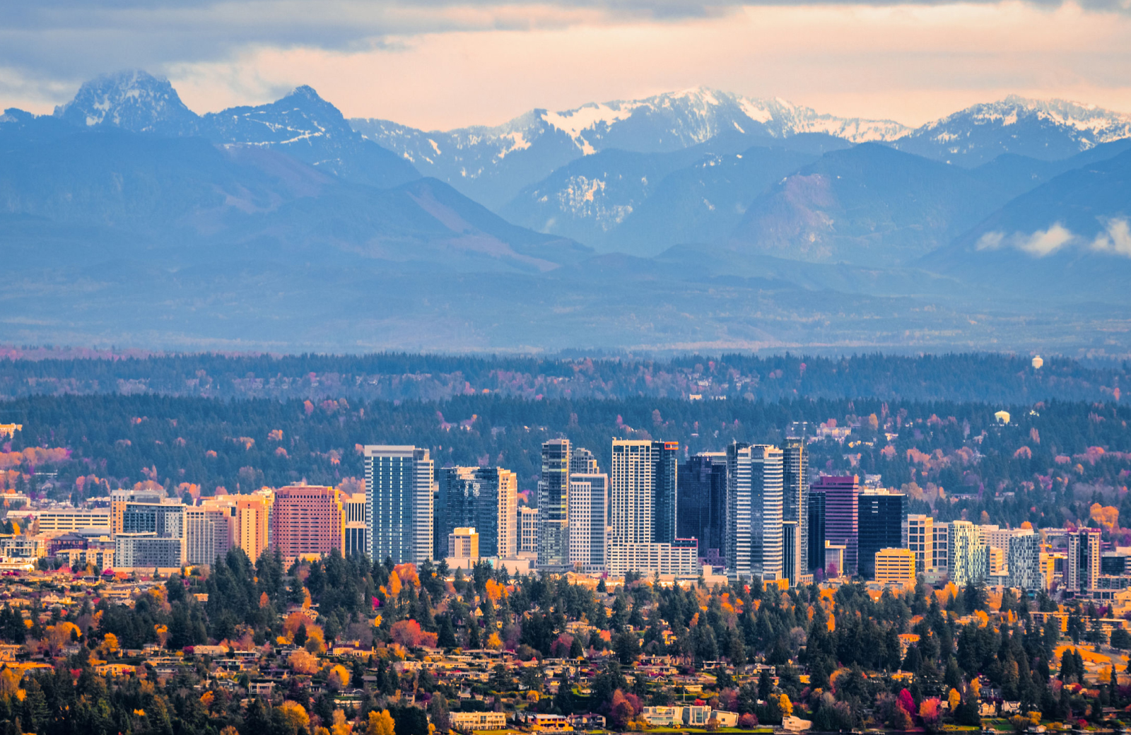 Help Me Find A Place To Live Reasons Why Bellevue Is One Of The Top 100 Places To Live