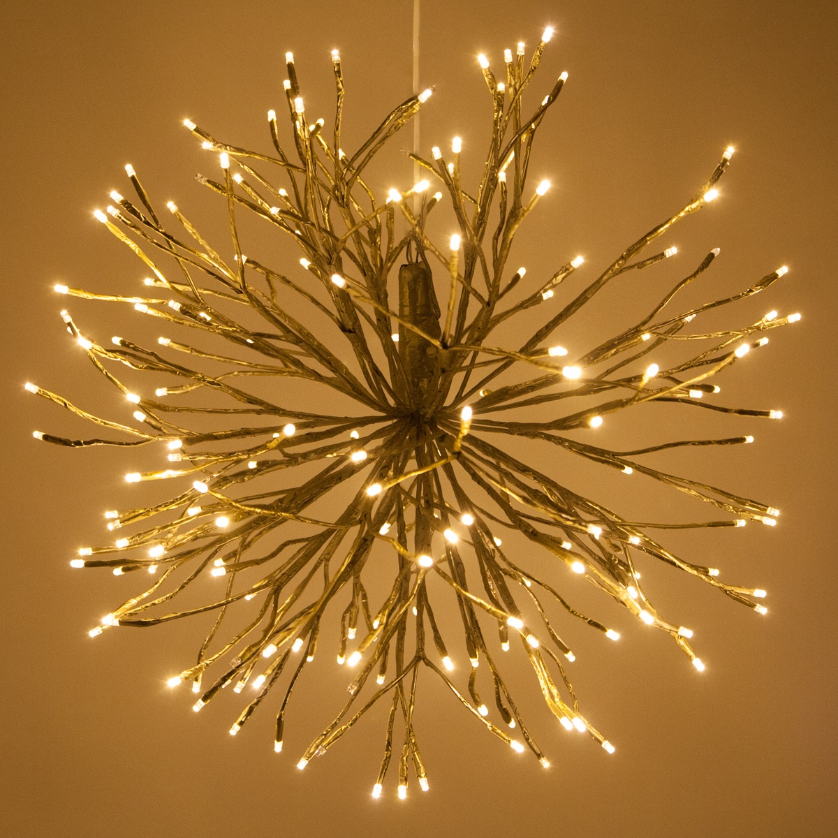 Led Rope Lights For Home Gold Starburst Lighted Branches With Warm White Led