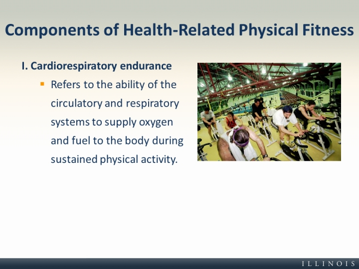 Components of Health-Related Physical Fitness - health components
