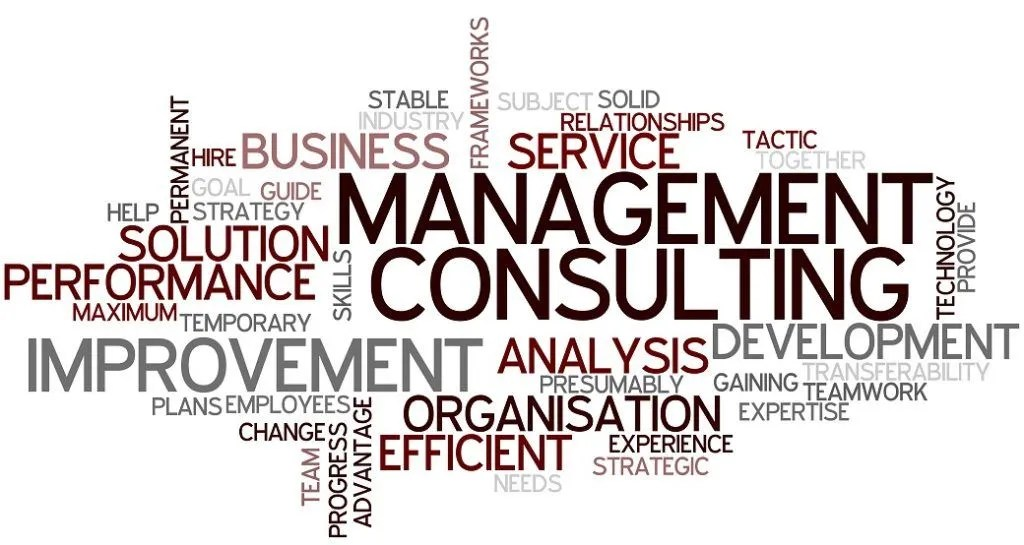 Management Consultant Job Description - Qualifications, Skills, Roles