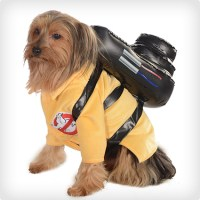 38 Best Dog Halloween Costumes of All Time