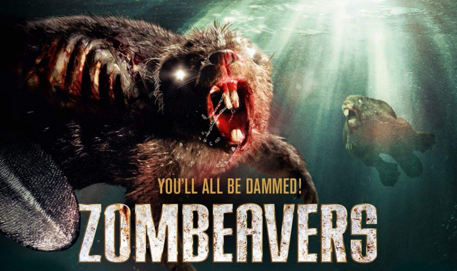 Shelf Wallpaper Iphone Watch These 5 Great Horror Comedies Before Zombeavers