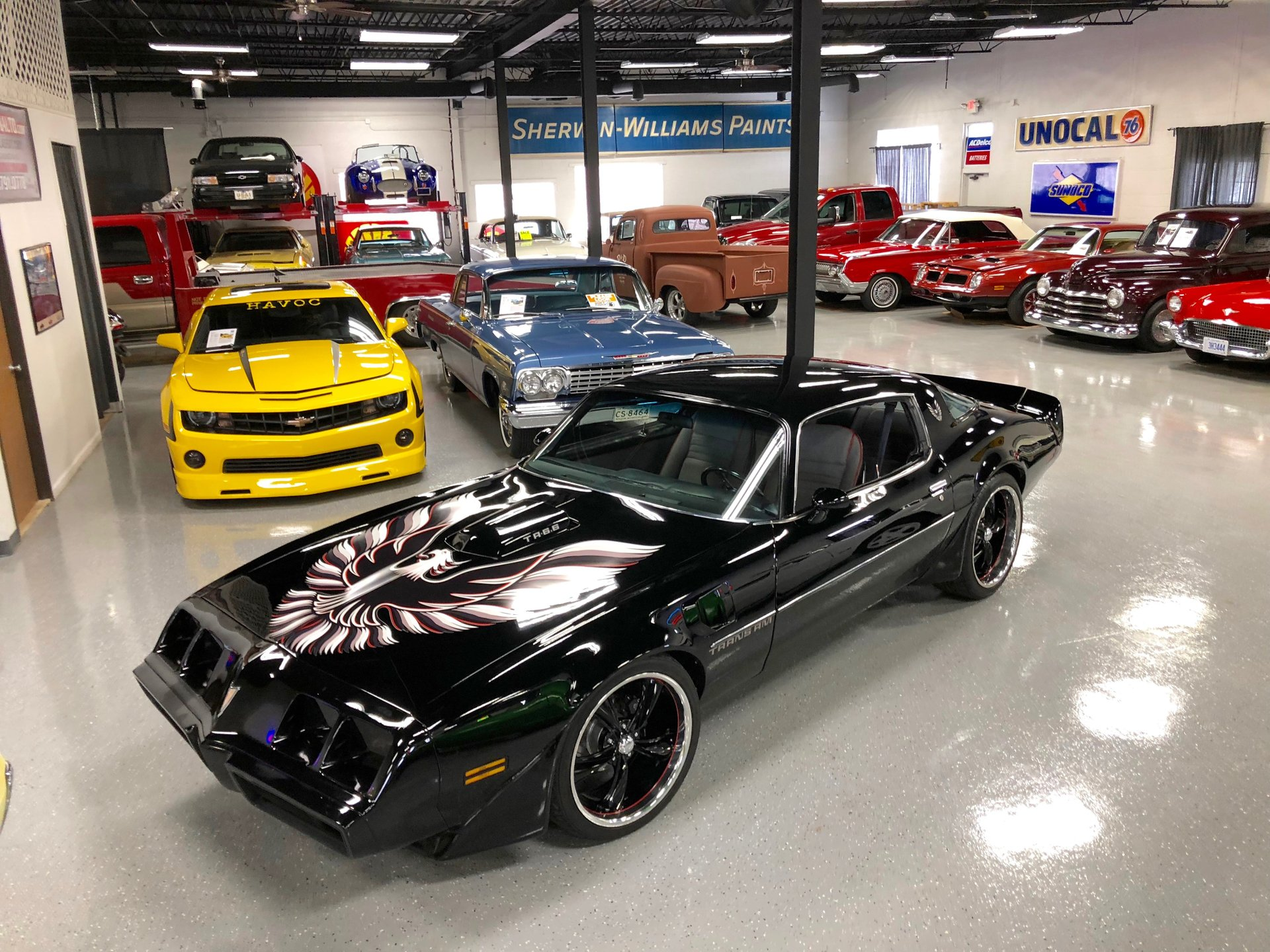 1979 Trans Am Picture 1979 Pontiac Trans Am Showdown Auto Sales Drive Your Dream