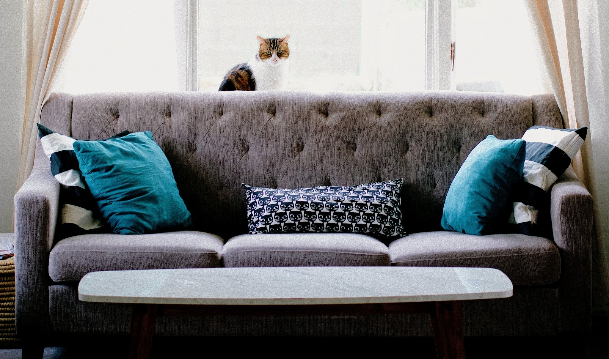 Traditionnelle Sofas In A Box Couch-in-a-box: The Best Modular Sofa Brands That Deliver To Your Door, Plus Discounts For Each