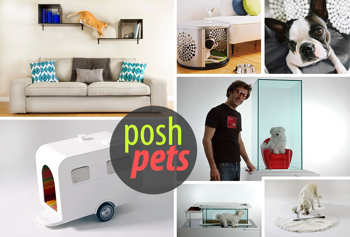 Cool Cat Supplies Modern Pet Furniture And Accessories For Design Lovers