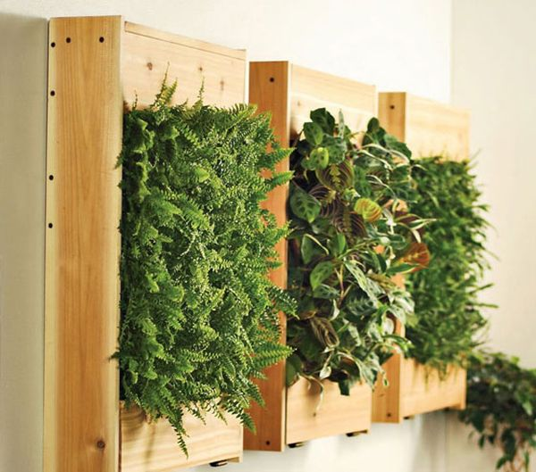 Green Standing Room Dividers For Living Room And Dining Room Cool DIY Green Living Wall Projects For Your Home