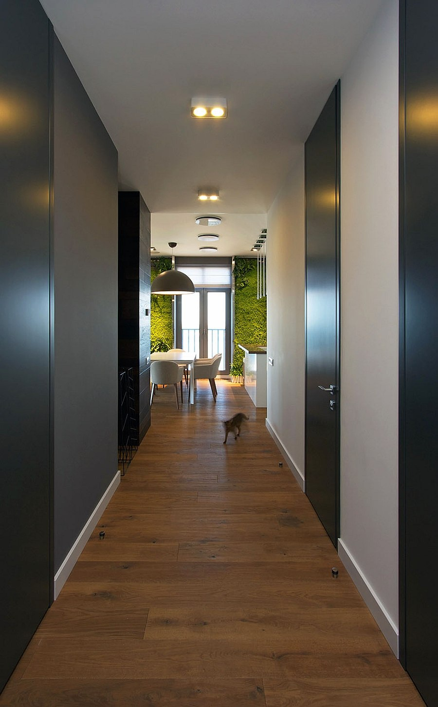 Feng Shui Accent Green Walls For A Stylish Apartment