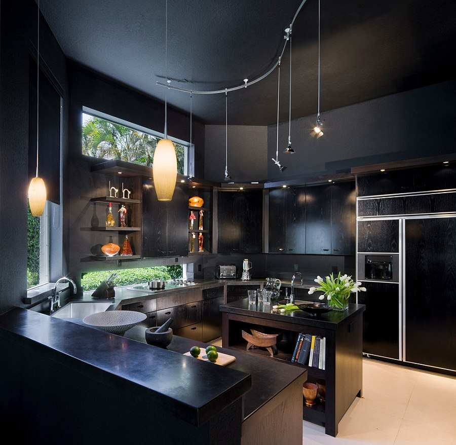 View in gallery gorgeous contemporary kitchen for those who love black design tomas frenes design studio