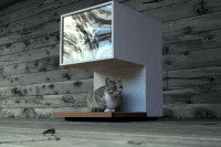 8 Purrfect Cat Houses for Your Favorite Feline Friend