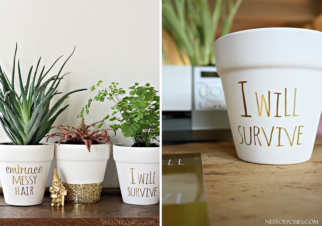 Cubicle Wall Planter 10 Diy Tiny Planters That Bring Green Goodness To Your Office