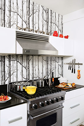 Wallpaper Kitchen Backsplash - Contemporary - kitchen