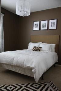 Mocha Brown Walls Design Ideas