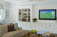 Built In Cabinets - Transitional - living room - Alisberg ...