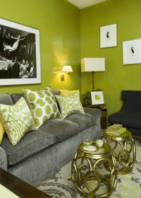 Chartreuse Walls - Contemporary - living room - Amanda ...