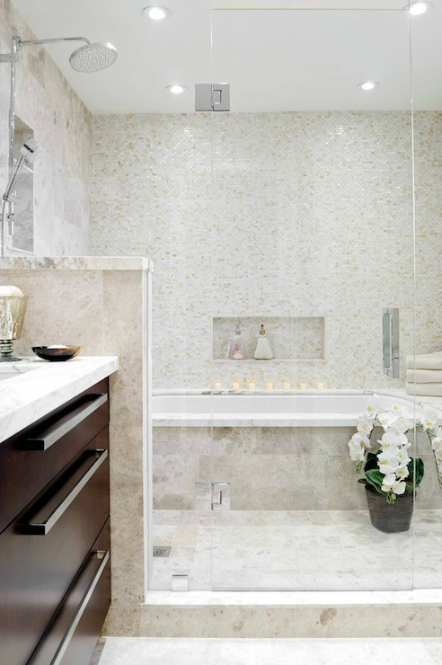 Keramik Toilet Walk In Shower And Tub Combo - Transitional - Bathroom