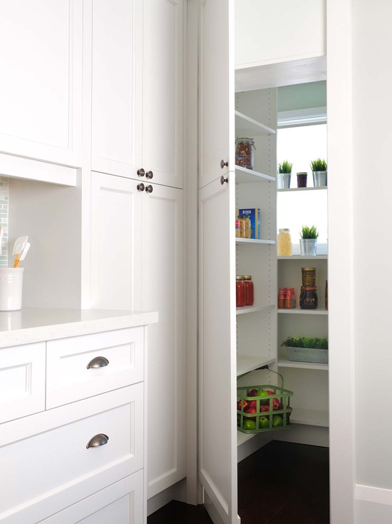 Girl And Marble Wallpaper Hidden Pantry Contemporary Kitchen