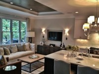 Contemporary Tray Ceiling in Living Room