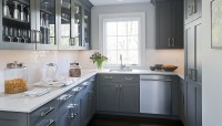 Gray Kitchen Cabinets - Transitional - kitchen - Kitchens ...