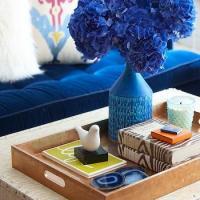 Blue Sofa Design Ideas