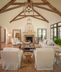 Living Room Vaulted Ceiling - Design, decor, photos ...