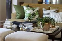 Beige and Green Living Rooms - Transitional - Living Room