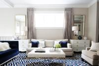 Navy Living Room Accents - Transitional - Living Room