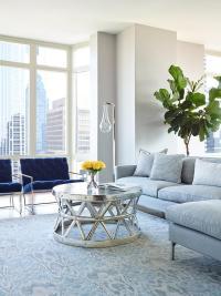 Blue and Gray Living Room Design - Contemporary - Living Room