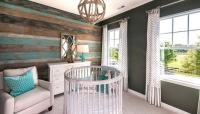 Turquoise Blue and Gray Nursery Design with Round Crib ...