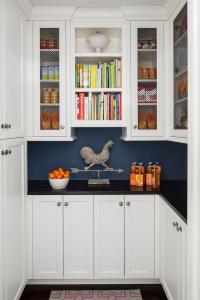 Chicken Wire Cabinets Design Ideas